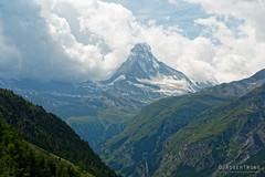 20190806-095-Haute Route day 12 - Almost all of Matterhorn (Roger T Wong) Tags: 2019 alps hauteroute matterhorn rogertwong sel24105g sony24105 sonya7iii sonyalpha7iii sonyfe24105mmf4goss sonyilce7m3 switzerland valais bushwalk hike mountains outdoors tramp travel trek walk