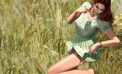 Field of Dreams (VeraCruza) Tags: amitieposes rkkn uber kustom9 field summer secondlife pose bento fashion maitreya legacy doux kunst