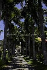 Batu Layar (sunrisejetphotogallery) Tags: batu layar senggigi lombok barat indonesia beach gunung agung landscape sea view