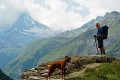 20190806-091-Haute Route day 12 - Selfie with doggo (Roger T Wong) Tags: 2019 alps hauteroute matterhorn rogertwong sel24105g sony24105 sonya7iii sonyalpha7iii sonyfe24105mmf4goss sonyilce7m3 switzerland valais boxer bushwalk dog hike hiker mountains outdoors portrait tramp travel trek walk