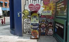 Brooklyn (neilsonabeel) Tags: newyorkcity streetart film brooklyn nikon analogue nikkor nikonfm2 mural