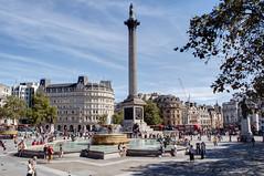 Trafalgar Square, London, September 2016 (marktandy) Tags: london september 2016 nelsonscolumn cityofwestminster charingcross wc2 statue monument