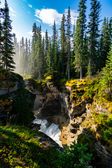 Athabasca falls was absolutely stunning ❤️ (Samwise.Snaps) Tags: travel summer canada jasper waterfall athabasca