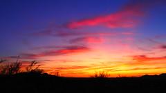 Let's Make Up (Enjoy 1001 pictorials of VGPhotoz) Tags: olympus em1markii m1442mm f3556 ƒ35 140 160 200 vgphotoz letsmakeup sky desert colors bliss blast sunset arizona yahoo flickr usa phoenix splendor