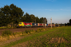 TXL 193 557 mit KLV in Borstel - 24.08.19 (Jan Ehrhorn) Tags: txl our daily heroes tx logistik verona lübeck
