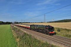 s70000-Daresbury-24.8.19 (shaunnie0) Tags: lsl locomotiveserviceslimited daresbury steamtrain thepalentine 70000 britannia pacific ukrailtours