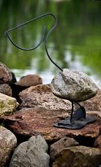 The Rare 'Rock Pelican' in it's natural setting (Bob's Digital Eye 2) Tags: texture rock stone canon rocks flicker t3i gardenornaments canonefs55250mmf456isstm smileonsaturday