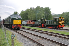 D8 + D2205 + D2139 (1) (ANDY'S UK TRANSPORT PAGE) Tags: trains rowsley peakrail class03 class04 brgreen class44