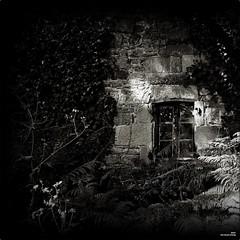 Lueur d'espoir (Un jour en France) Tags: canoneos6dmarkii canonef1635mmf28liiusm noiretblanc noiretblancfrance black strange nuit