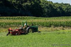 Johnny Tractor making Hay (Thomas DeHoff) Tags: john deere 4020 new holland discbine hay illinois summer sony a77mk2