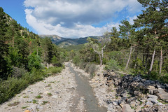 Vallon du Pin (RIch-ART In PIXELS) Tags: france senez castellane provencealpescôtedazur landscape paysage tree forest fleuve river water mountain montagne cloud sky ciel fujifilmxt20 xt20 graviers creek