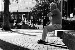 Street (lightersideofdark) Tags: blackwhite streetphotography urban seat seated lonely loneliness dark shadows outside outdoors trees bohkeh cobbles stone