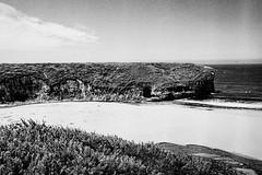 Bonnie Doon Beach, Santa Cruz (Postcards from San Francisco) Tags: m2 trix 35mmsummicroniv diafine film analog santacruz california