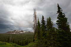 Stormy Sky (Wild Open Landscapes) Tags: 2019 5dmkiii canon coldspringscampground colorado flattops july mountains routtnationalforest summer