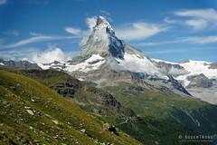 20190808-35-MAtterhorn from Findelbach Valley (Roger T Wong) Tags: 2019 alps matterhorn rogertwong sel24105g sony24105 sonya7iii sonyalpha7iii sonyfe24105mmf4goss sonyilce7m3 switzerland valais zermatt clouds mountain mountains travel triangle
