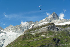 20190808-45-Paraglider and avalanche protection on hillside (Roger T Wong) Tags: 2019 alps rogertwong sel24105g sony24105 sonya7iii sonyalpha7iii sonyfe24105mmf4goss sonyilce7m3 switzerland valais zermatt clouds mountains travel