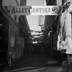 Mexican Alley (Haruhara_Izzy) Tags: yashica mat 124g ilford hp5 cinestill df96 du dunedin