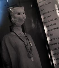 Magic Cat people (Haruhara_Izzy) Tags: yashica mat 124g ilford hp5 cinestill df96 du dunedin