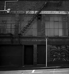 Back Streets of Dunedin (Haruhara_Izzy) Tags: yashica mat 124g ilford hp5 cinestill df96 du dunedin
