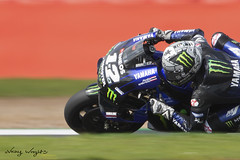 Maverick Vinales 12 (FocusedWright) Tags: bike bikes race racing uk england silverstone track tracks circuits motogp maverick finales 12 maverickvinales