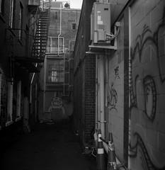 Cool Graffiti (Haruhara_Izzy) Tags: yashica mat 124g ilford hp5 cinestill df96 du dunedin
