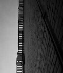 The Stairway (Haruhara_Izzy) Tags: yashica mat 124g ilford hp5 cinestill df96 du dunedin
