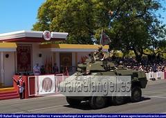 Carro de Combate. Desfile del Día de las Fuerzas Armadas #DIFAS2019 (agenciapressage) Tags: felipevideespaña reydeespaña reyespañol monarcaespañol reyesdeespaña monarcasespañoles díadelasfuerzasarmadas difas difas2019 fuerzasarmadasespañolas desfile sevilla andalucía españa ejércitoespañol ejércitodeespaña tropasespañolas militaresespañolas militaresespañoles hombressoldado mujeressoldado militar militares soldado soldados oficiales suboficiales fuerzasarmadas paseodecolón maestranzadesevilla plazadetorosdesevilla carrodecombate regimientoacorazado caballería ejércitodetierra sevillaseville españaspain