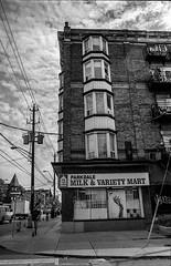 Parkdale (Uta_kv) Tags: homedevelped slr filmcamera blackandwhitephotography supermulticoatedtakumar ilfordhp5 rodinal rangefinder fujicast801 hp5plus1600 hp5 35mm film fujica