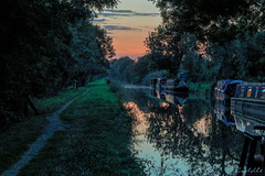 Canal At Brinklow 24th August 2019 (boddle (Steve Hart)) Tags: road england canal unitedkingdom rugby bruce united steve august hart steven coventry 24th wyke 2019 brinklow wyken at boddle stevestevenhartcoventryunitedkingdomcanon5d4 life flowers winter wild summer flower bird nature birds canon butterfly insect is spring natural britain spiders wildlife great moth butterflies insects creepy ii fungus moths 5d usm 100400mm crawley wilds fungii mk4 kingdon autumn sunset sky cloud sun weather clouds landscape seasons panoramic