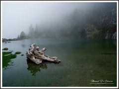 Zen (Photo Manu) Tags: nature paysage landscape france pyrénées lac eau water montagne mountain calme peace paix brouillard