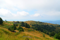 The Matajur Plateau [Pulfero - 18 August 2019] (Doc. Ing.) Tags: 2019 nikond5100 savogna friuli friuliveneziagiulia fvg ud nordest italy hiking trekking walking alps matajur julianalps trekkingarcobaleno mountains landscape slaviafriulana