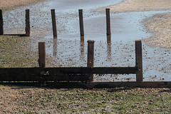 Beach at Lee on the Solent-F8220052 (tony.rummery) Tags: breakwater em5mkii groyne leeonthesolent mft microfourthirds omd olympus seascape shingle solent southcoast hampshire england unitedkingdom