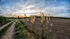 Poland country landscape (mic.niemczyk) Tags: poland nikon nikkor samyoung landscape people