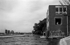 Lake Ontario (Uta_kv) Tags: homedevelped slr filmcamera blackandwhitephotography supermulticoatedtakumar ilfordhp5 rodinal rangefinder fujicast801 hp5plus1600 hp5 35mm film fujica