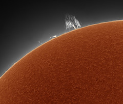 20190825 10-47 Prominence (Roger Hutchinson) Tags: sun prominence london lunt ls60tha zwo asi174mm televue powermate astronomy astrophotography space