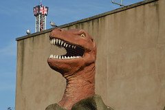 T-Rex and Ice Blast (CoasterMadMatt) Tags: blackpoolpleasurebeach2019 pleasurebeachblackpool2019 blackpoolpleasurebeach pleasurebeachblackpool pleasurebeach pleasure beach blackpool 2019season amusementpark themepark amusement theme park parks englishamusementparks amusementparksinengland rivercaves river caves station stationbuilding trex tyrannosaurus tyrannosaurusrex iceblast ice blast lancashire lancs fyldecoast northwestengland northwest england britain greatbritain unitedkingdom uk gb europe february2019 winter2019 february winter 2019 coastermadmattphotography coastermadmatt photography photographs photos nikond3200