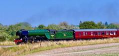 Flying Scotsman, near Newbury..