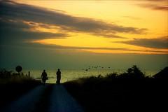 Beyond the Horizon (*Kicki*) Tags: sunset sky silte gotland sweden people women silhouettes horizon birds evening clouds sea water beyondthehorizon twilight kvarnåkershamn summer