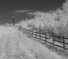Phone Mast and lampposts of the M25 (IanAWood) Tags: 720nminfrared chorleywood digitalinfrared hertfordshire nikkorafs1224mmf4gdx nikond70ir thechilterns walkingwithmynikon