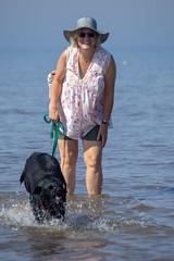 Unleash the hounds (alasdair massie) Tags: labrador wash beach dog black snettisham vizsla sea norfolk seaside sarah scarpa uk