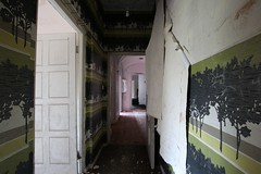 IMG_6169 (mookie427) Tags: urbex urban exploration exploring explorers explorer ue derelict dereliction abandoned abandonment decay decayed empty vacant house manor mansion villa maison uk