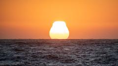 Testing - Sigma 150-600 (24 of 30) (Quentin Biles) Tags: 150600 c ca california contemporary d850 nikon pg pacificgrove sigma sunset