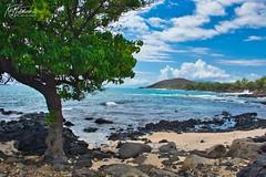 North 'Ahihi Bay (Kirt Edblom) Tags: maui mauihawaii makena makenahawaii hawaii gaylene wife water waves waterscape clouds cloudy bay milf tree trees tropical scenic sand beach rocks rock landscape serene seascape kirt kirtedblom edblom luminar nikon nikond7100 nikkor18140mmf3556 pacific ocean pacificocean