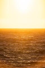 Testing - Sigma 150-600 (9 of 30) (Quentin Biles) Tags: 150600 c ca california contemporary d850 nikon pg pacificgrove sigma sunset