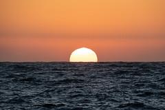Testing - Sigma 150-600 (26 of 30) (Quentin Biles) Tags: 150600 c ca california contemporary d850 nikon pg pacificgrove sigma sunset