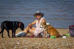 Picnic breakfast (alasdair massie) Tags: labrador wash beach dog black snettisham vizsla sea norfolk seaside pasha sarah scarpa uk