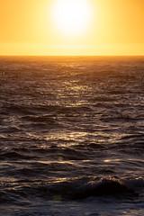 Testing - Sigma 150-600 (10 of 30) (Quentin Biles) Tags: 150600 c ca california contemporary d850 nikon pg pacificgrove sigma sunset