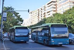 IF 06 POV + IF 89 STV - 20.08.2019 (VictorSZi) Tags: romania bucharest bucuresti stv transport publictransport nikon nikond5300 august summer vara