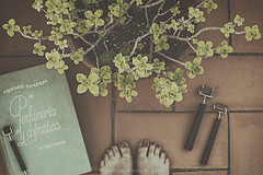 Not relax (Graella) Tags: flatlay pies feet plants seasonsmydiary seasons books vintage