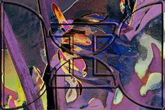 Capullo (seguicollar) Tags: art arte artedigital texturas virginiaseguí imagencreativa photomanipulation capullo dalia tratamiento marco pétalos flower closeup